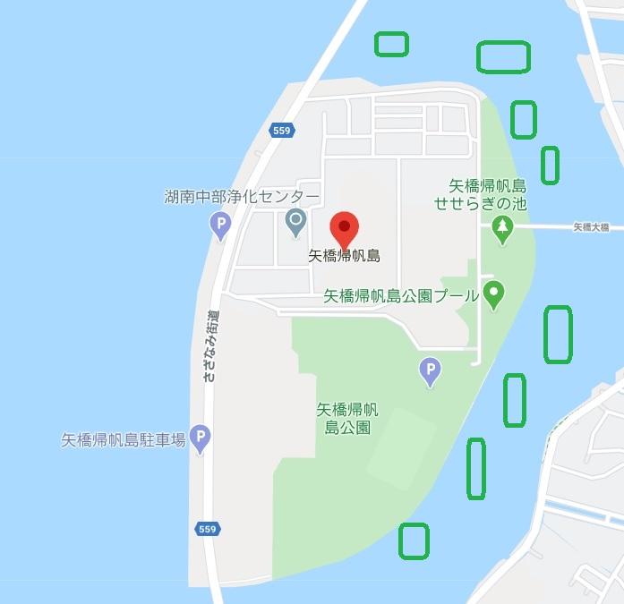 琵琶湖の矢橋帰帆島周辺沖ウィード